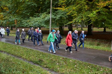 gå, vandre, efterår, Dyrhaven, Gentofte, medlemmer